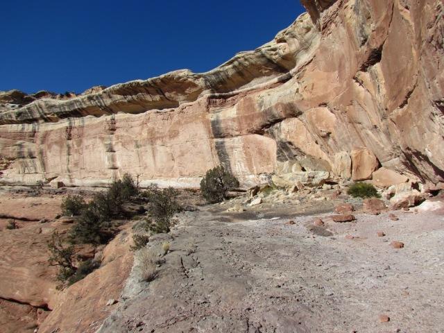 Cedar Mesa sandstone