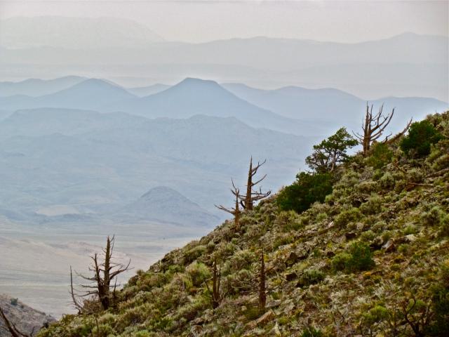 San Luis Hills