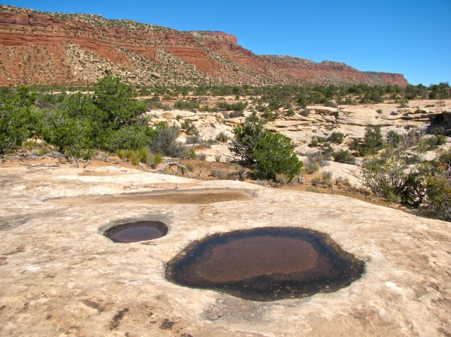 desert potholes